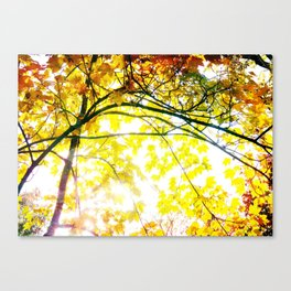 Lovely Autumn Leaves Tree Branch Nature - Canvas Texture Canvas Print