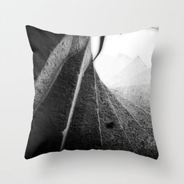 166 Steps Throw Pillow