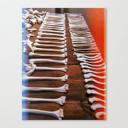 Bones Baby Canvas Print