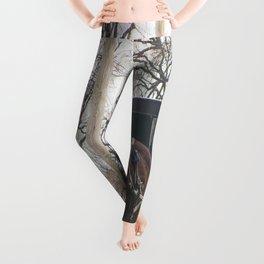Lancaster Leggings