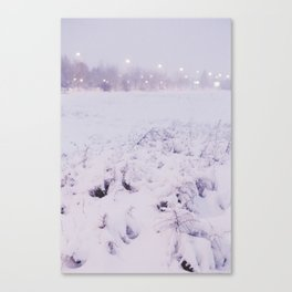 Snow in the evening Canvas Print