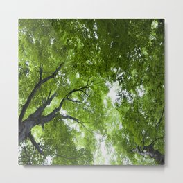 Leaves and Lace Metal Print