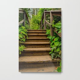 Step Up Metal Print