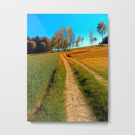 Hiking trail following the trees Metal Print