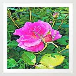 Pink Flower of Graceful Beauty Art Print