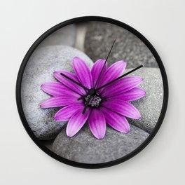 Zen Pink Daisy Pebble Still Life Wall Clock