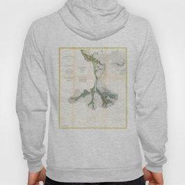 Vintage Map of The Mississippi River Delta (1874) Hoody