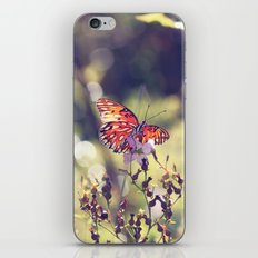 I Dream of Wings iPhone & iPod Skin