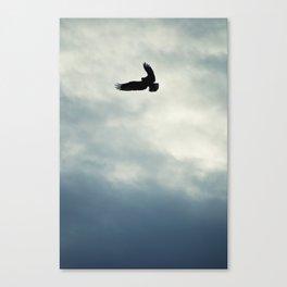 Hawkwind Canvas Print