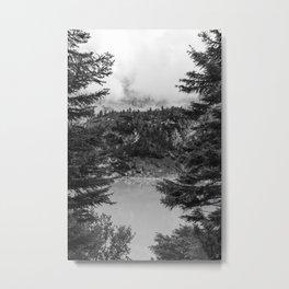 Between Pine (Black and White) Metal Print