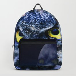 Owl and Night Sky Backpack