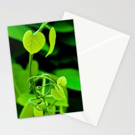 Nature's Twist Stationery Cards