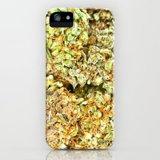 Dedicated Medicator pt.1 (LSD strain) Slim Case iPhone (5, 5s)