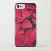 moulin rouge iPhone & iPod Cases featuring Rouge by KunstFabrik_StaticMovement Manu Jobst