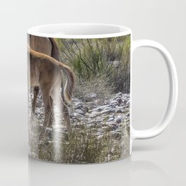 Salt River Mare and Her Colt, No. 2 Coffee Mug