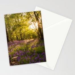 Bluebell Wood MK Stationery Cards