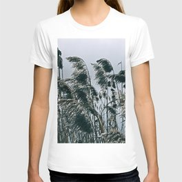 Reeds on Lake Lugano T-shirt