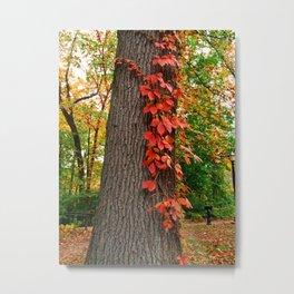 Fall Climb Metal Print