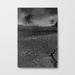 Hopeful Metal Print