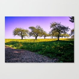 Swabian Toscany Canvas Print