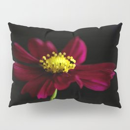 Elegance of a Cosmo Pillow Sham