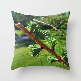 Black Spruce Branch Throw Pillow