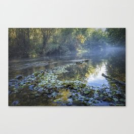 Delta Creek Canvas Print