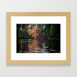 Lake Memories Framed Art Print