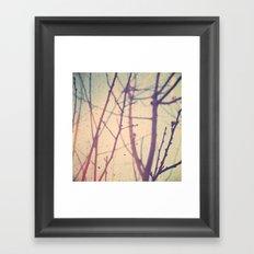 spring bud Framed Art Print