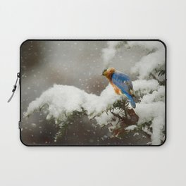 Winter Bluebird Laptop Sleeve