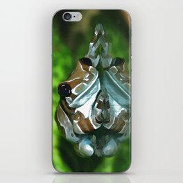 Amazon Milk Frog iPhone Skin
