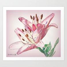 Rosella's Dream Art Print