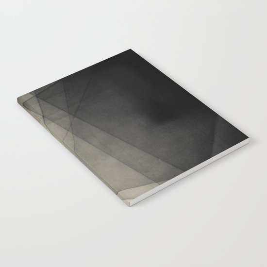 Abstract 221 Notebook