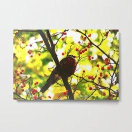 MOCKING BIRD Metal Print