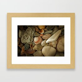 Sea Pebbles With Shells Framed Art Print