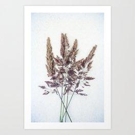 Velvet Grass Art Print