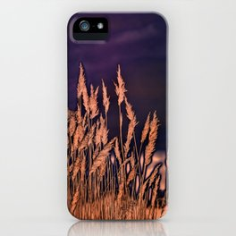 Abstract beach grass iPhone Case