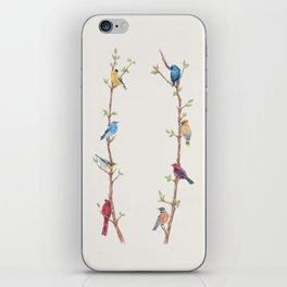 Bird Branches iPhone Skin