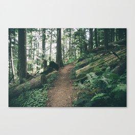 Happy Trails XI Canvas Print