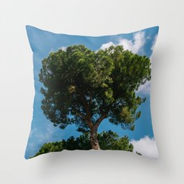 Italian Stone Pine Tree II Throw Pillow