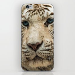 FACE OF THE WHITE TIGER iPhone Skin