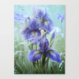 Imagine - Fantasy iris fairies Canvas Print