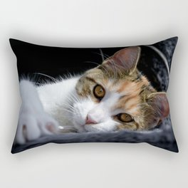 Ginny the maine coon kitten Rectangular Pillow