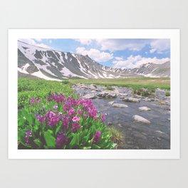 Above the tree line, in the tundra above Breckenridge, Colorado Art Print