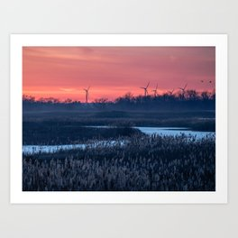 Long Point Sunsets Art Print