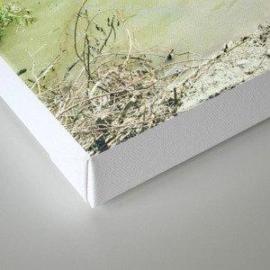 summer photography, beach photography, beach, swim hole, Landscape, Sonoma County, Russian River, Ri Canvas Print
