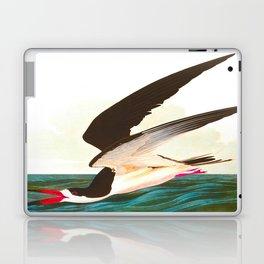 Black Skimmer or Shearwater Bird Laptop & iPad Skin