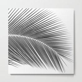 Palm leaf - bw Metal Print