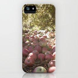 Under the Apple Tree iPhone Case