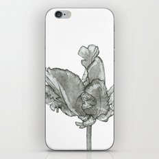 Monochromatic Orchid iPhone & iPod Skin